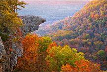 Fall Foliage / by Farmers' Almanac
