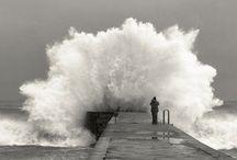j'adore la mer / by Theresa L