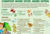 Compost / by Rhiannon Atkinson