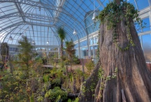 Orchid Range Conservatory / by Duke Farms