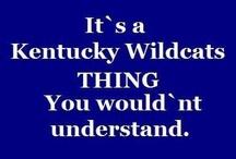 Your Kentucky Wildcats!!!! / by David Irwin