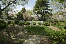Garden Ideas / by Lynn Terry