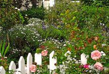 Cottage garden ideas / by Beth Wheeler