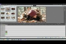 ADOBE PE 11 | tutorials / by Lori A. Seals Photography & Boutique