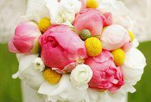 Flowers / by Sherrill Morrison