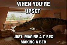 Makes me laugh / by Leigh Enselman
