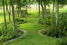 Garden inspiration  / by Tomas Rosenberg