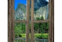 cabin fever / by Reta Caravantes
