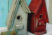 bird houses / by Macan Rosabal