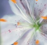 Homeschool: Apologia Botany / by Janette McCord