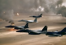 Operation Desert Storm / by Michael Kapral