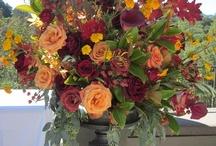 ideas for Klara / by Lora Losinger~ Sophisticated Floral Designs