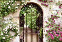 A Secret Garden / by Julie Craig