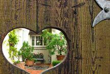 Gardening / by Chantel Bronkhorst