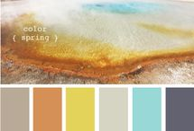 Color Palettes / by Stacie K