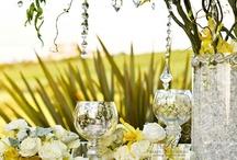 Weddings General / by Yara Holt