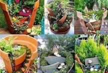Garden  / by Evelyn R.