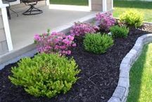 landscaping ideas / by Sandy Omalley