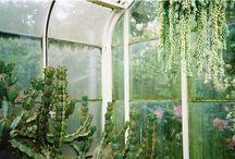 Dream Studio / by Erin Gleeson