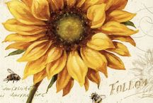 Sunflowers / by Trish Rogers