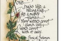 Delightful love / by Viviane Ellis