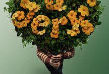 Ads / by Megan Klein