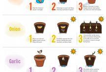 Garden Ideas / by Ahlam Said