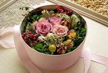 flower box / by Jessamyn Sommers