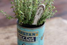 Herbs / by Unodedos Recetas