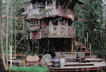 tree houses / by Marcelle Sussman Fischler
