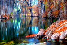 Beautiful! / by Leslie McDonald