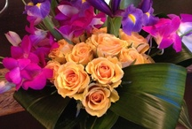 H.Bloom deliveries / by Sean Flynn