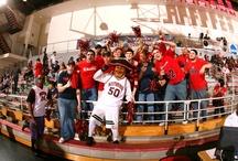 CSUN Athletics / by California State University, Northridge