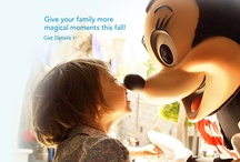 Disneyworld Trip / Going to Disneyworld in Thanksgiving for the first time! Very excited! / by Amy Edwards