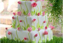 Cake Decorating / by Michelle Runyon