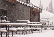 Snow Storms of 2014-2015 / Track Wolf Creek's storms via photos on this board / by Wolf Creek Ski Area