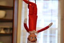 Holidays ~ Elf on the Shelf / by Tara Robertson