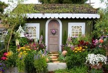 My Secret Garden / by Colleen Moore Wilson