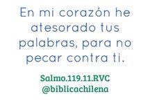 Salmo 119 / La importancia de la Palabra de Dios en la vida del cristiano. #Biblia / by Sociedad Biblica Chilena