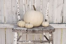 Fall Decor / by Hooked on Houses