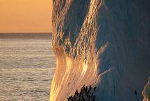 Natural Phenomena / science_nature / by Cathy Kantowski