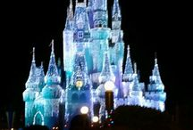 Disney World / by Stephanie Allard LaRocque