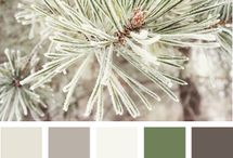 house paint colors  / by Sarah Brown