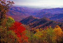 Where I live--the Shenandoah Valley in Va.  / by Mollie Bryan