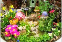 *Fairy Garden* / by Christina Eagle