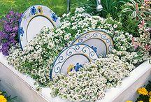 outdoor/gardening  / by Felicia Meador