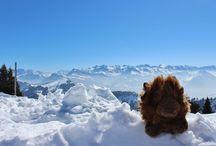 Switzerland / by NDSU Study Abroad