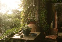 Ma cabane au fond du jardin / by Cookingmymy (Audrey)