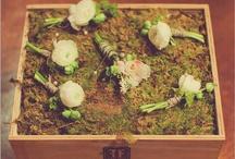 Wedding-B & M  / by Mallory @ the House of Hydrangeas