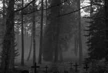 dark  / by Steve Bowden